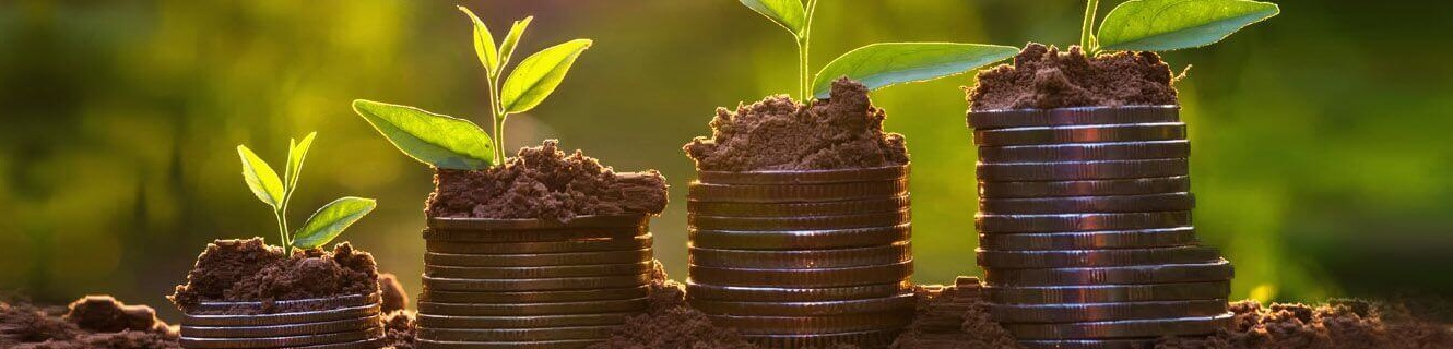 money growing on dirt image